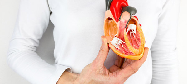 Spotting the Symptoms of a Heart Attack